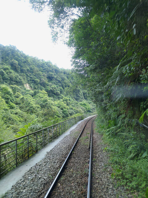 平溪小火車上,還有個超適合愛看風景的旅客坐的VIP座位