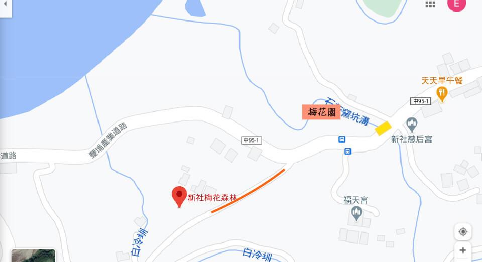 新社梅花森林2021